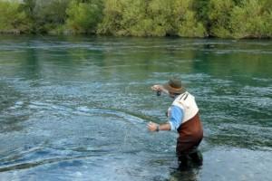 suple junin pesca con mosca en rio chimehuin